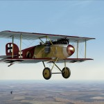 Lone Wulffe Squadron Albatros D2 Early